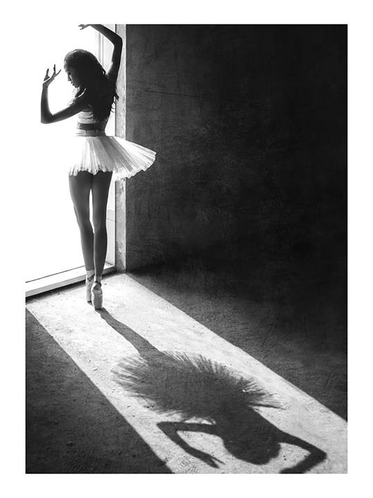 Poster Ballet Shadow 40x50